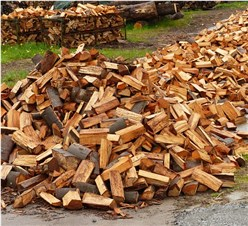 Brennholz Arten