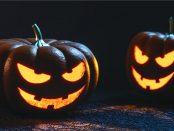 halloween-kuerbis-artikel