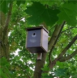 Anleitung Vogelhaus Selber Bauen vogelhaus nistkasten selber bauen unsere anleitung
